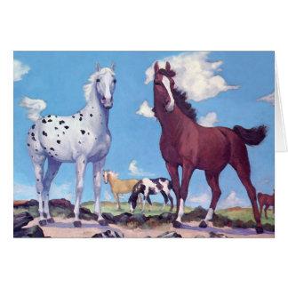 Appaloosa and Arabian Stallions Card