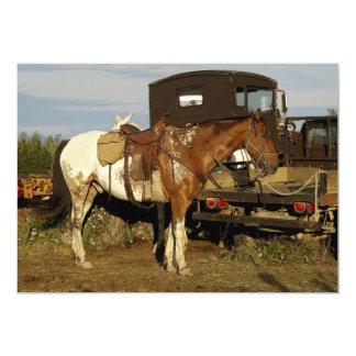 Appaloosa Horse Invitation Cards