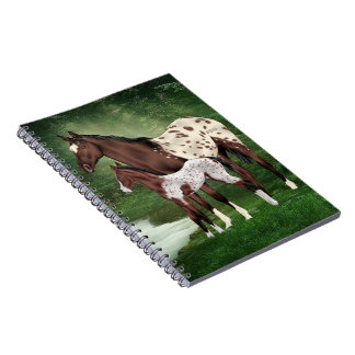 Appaloosa Horse Mare and Foal Notebook