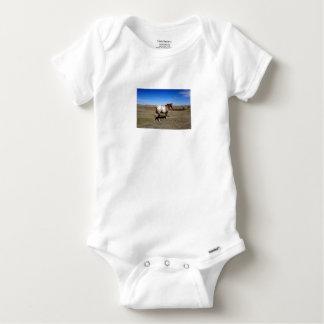 Appaloosa horse on summer prairies baby onesie