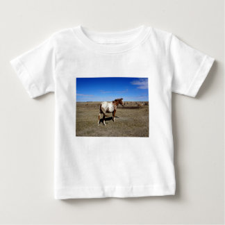 Appaloosa horse on summer prairies baby T-Shirt