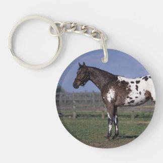 Appaloosa Horse Standing Key Ring