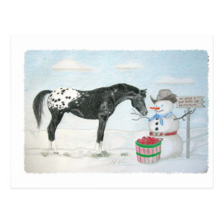 Appaloosa horse with snowman, rectangular postcard