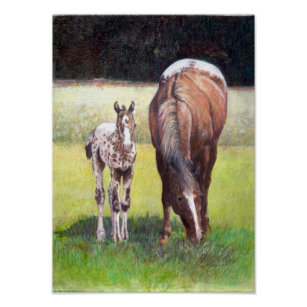 Appaloosa Mare and Foal Portrait Poster