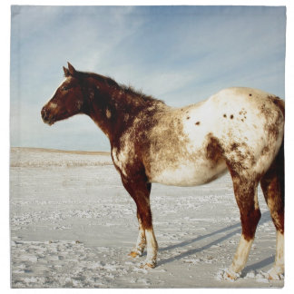 Appaloosa Mare in Winter Snow Napkin