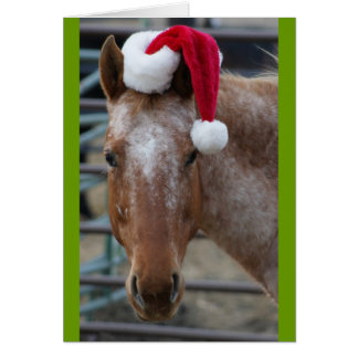 Appaloosa with Santa Hat Card
