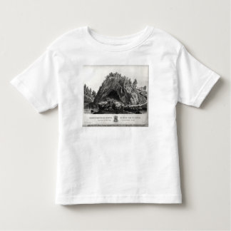 Apparition of the Virgin Mary Toddler T-Shirt