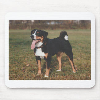 Appenzeller Sennenhund Dog Mouse Pad
