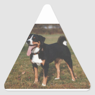Appenzeller Sennenhund Dog Triangle Sticker