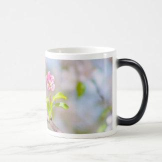 Apple blossom - Beauty Magic Mug
