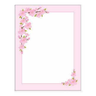 Apple Blossom Border Postcard