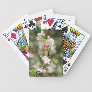 Apple Blossom Branch Bicycle Playing Cards