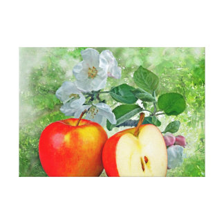 Apple blossom… canvas prints