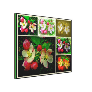 Apple Blossom Collage - Enhanced Digital Photo Gallery Wrapped Canvas