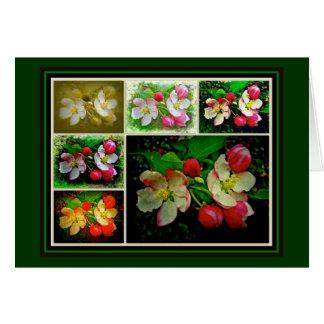Apple Blossom Collage - Enhanced Digital Photo Greeting Card