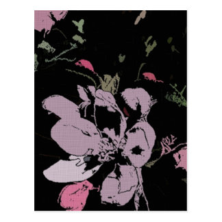 Apple Blossom in Ink Postcard