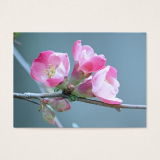 Apple Blossom #P0358 Mini Print Business Card