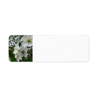 Apple Blossom Return Address Label