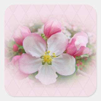 Apple Blossom Time Square Sticker