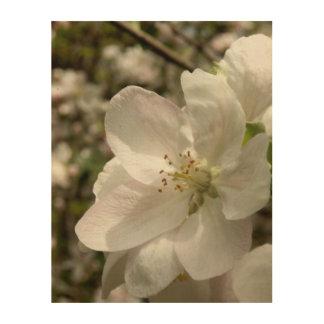 Apple Blossom Wood Wall Art