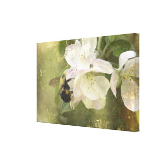 Apple Blossoms and Bumblebee Canvas Prints