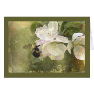 Apple Blossoms and Bumblebee Greeting Card