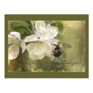 Apple Blossoms and Bumblebee Postcard