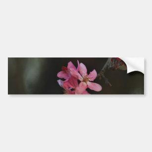 Flower Meaning Bumper Stickers - Car Stickers   Zazzle com au
