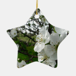 Apple Blossoms Ceramic Star Decoration