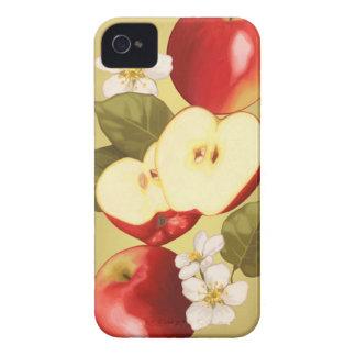 Apple iPhone 4 Cases