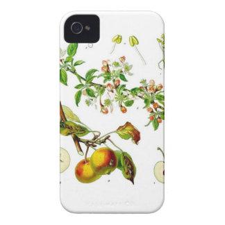 Apple iPhone 4 Case-Mate Cases