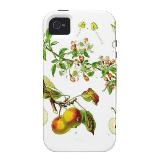 Apple iPhone 4/4S Cover