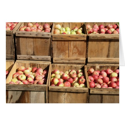 Apple crates cards zazzle for How to make apple crates