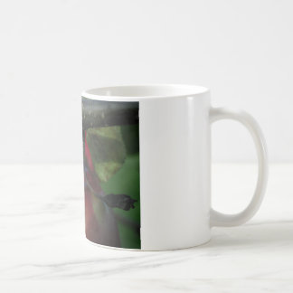 Apple Hanging From a Branch Coffee Mug