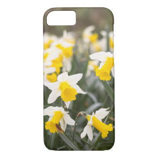 Apple iPhone 7 Daffodil Phone Case