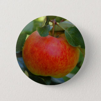 Apple James Grieve 6 Cm Round Badge