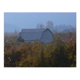 Apple Orchard Barn Postcard