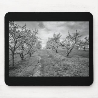 Apple Orchard in Spring Mouse Pad