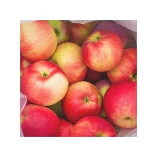 Apple Picking Canvas Print