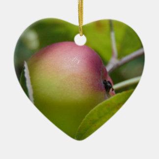 Apple Ripening Ceramic Heart Decoration