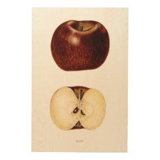 """Apple Slice 24"""" x 36"""" Wood Prints"""