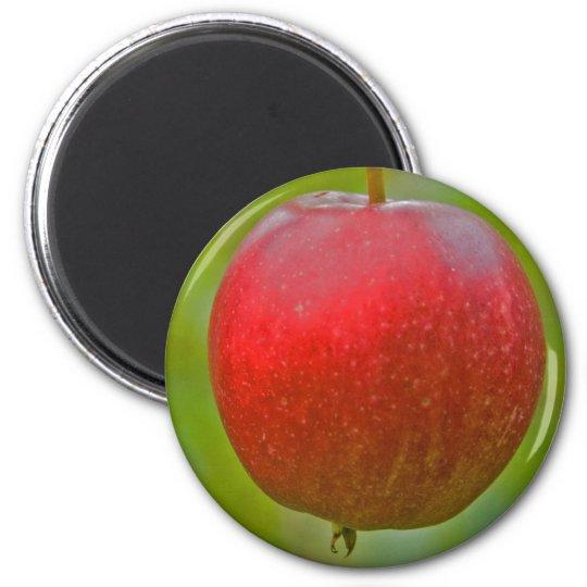 Apple Summer Red Magnet