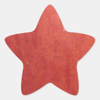 Apple Texture Star Sticker