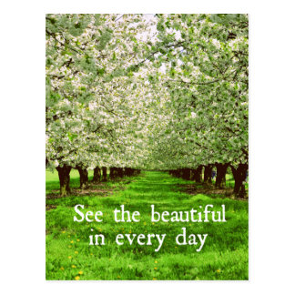 Apple Trees Blossoms with Inspirational Quote Postcard
