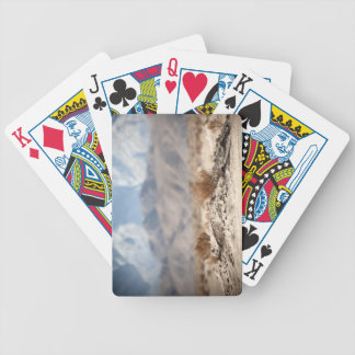 Apple Valley Flora Bicycle Playing Cards