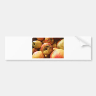 Apples Bumper Sticker