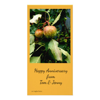 Apples in the Fall Card