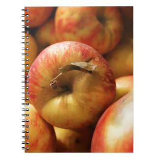 Apples Notebook