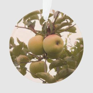 Apples on Apple Tree Ornament