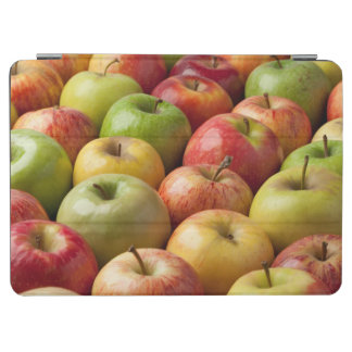 Apples - Ripe & Colorful iPad Air Cover